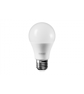 Lâmpada Bulbo LED A60 12W 6500K - Intral